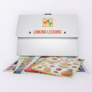 Linking Lessons for Schools